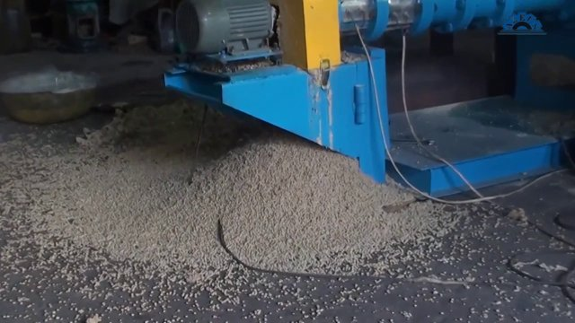 fish_feed_pellet_extrusion