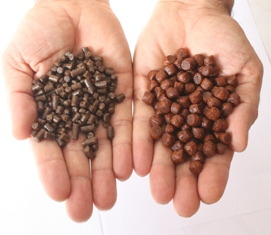pelleted_feed_and_extruded_feed