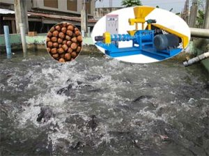 Floating Fish Feed Machine in Nigeria