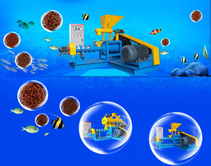 dry type fish feed machines