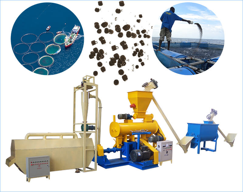 fish feed production plant