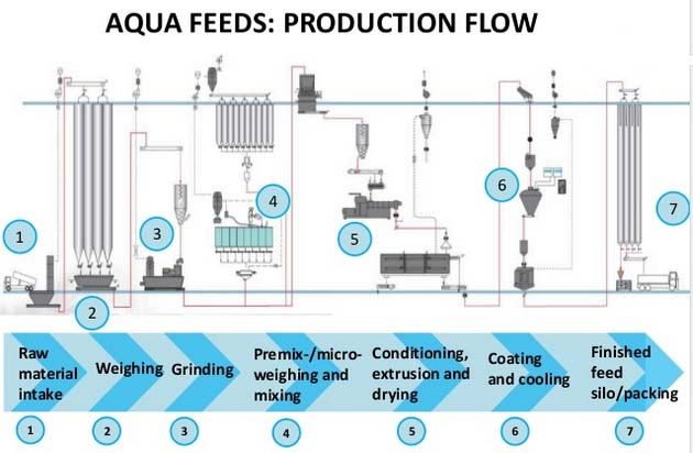 Tilapia And Shrimp Feed Making In Brazil
