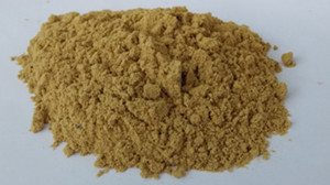 powder of fish feed