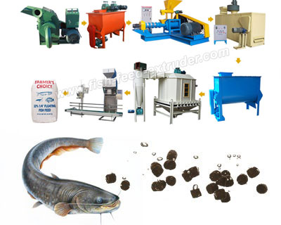Floating Catfish Feed Pellet Production in Nigeria