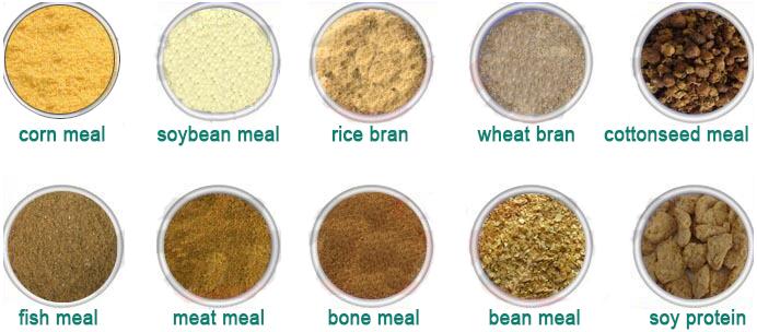 fish feed materials