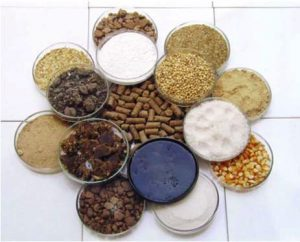 raw materials of feed pellets