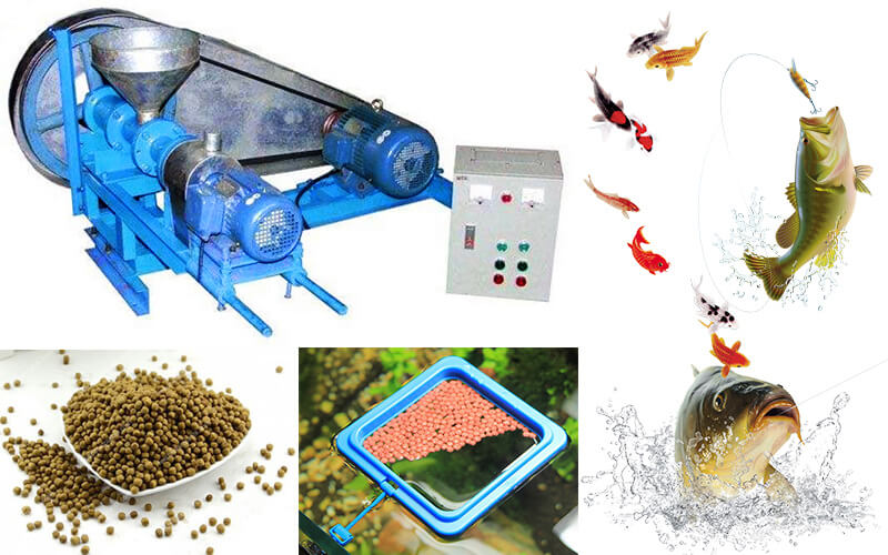 mini fish feed extruder